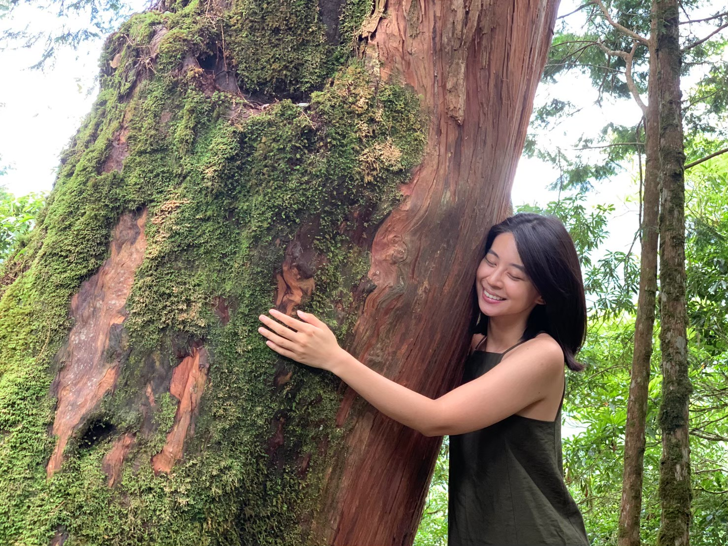 |小森森說故事 EP17|檜山坊的誕生:為了爸爸,我們把森林帶回家。